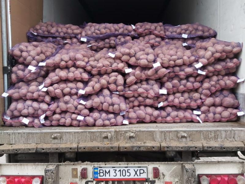 погрузка картофеля